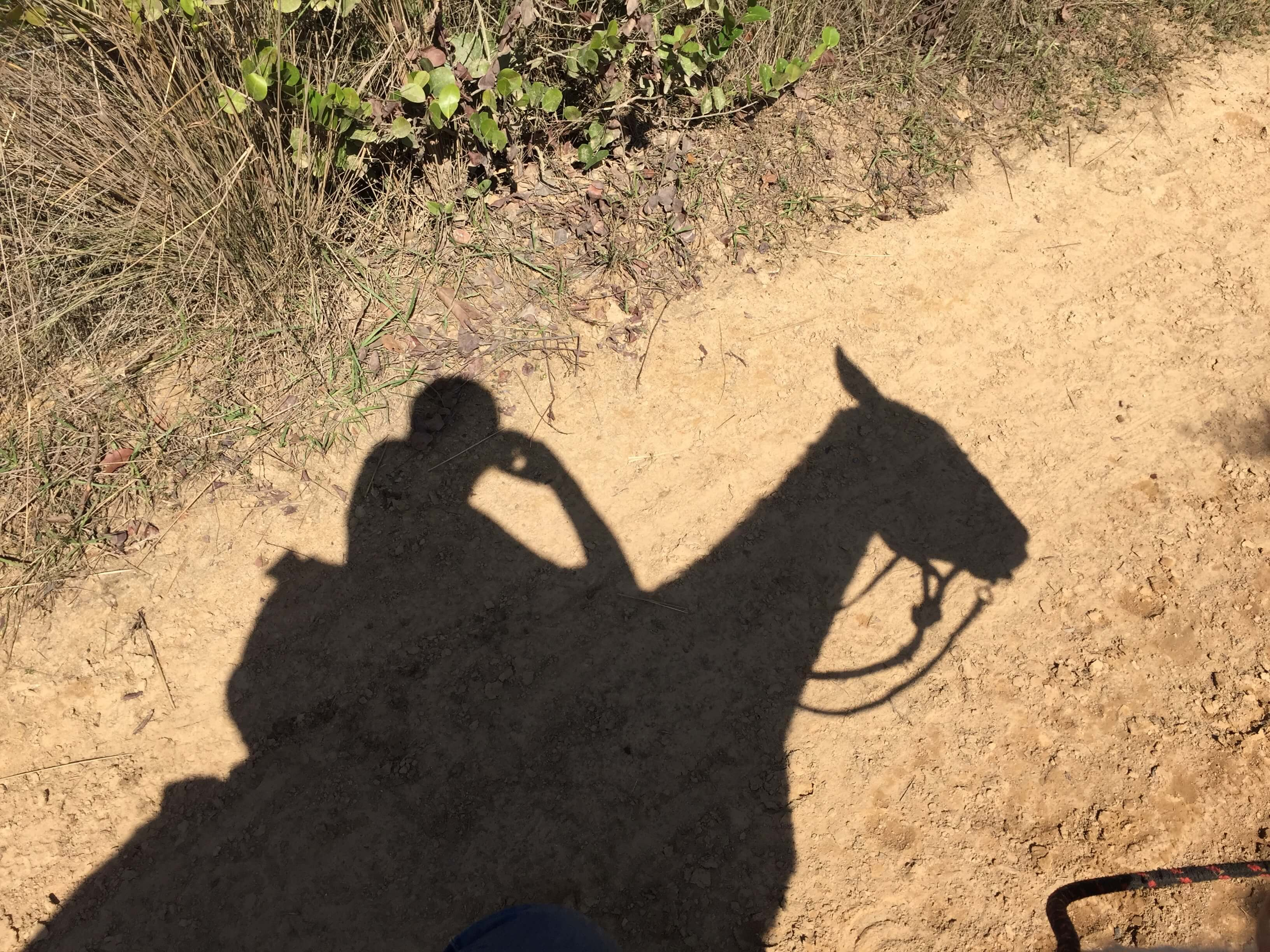 Vinales Reiten Schatten