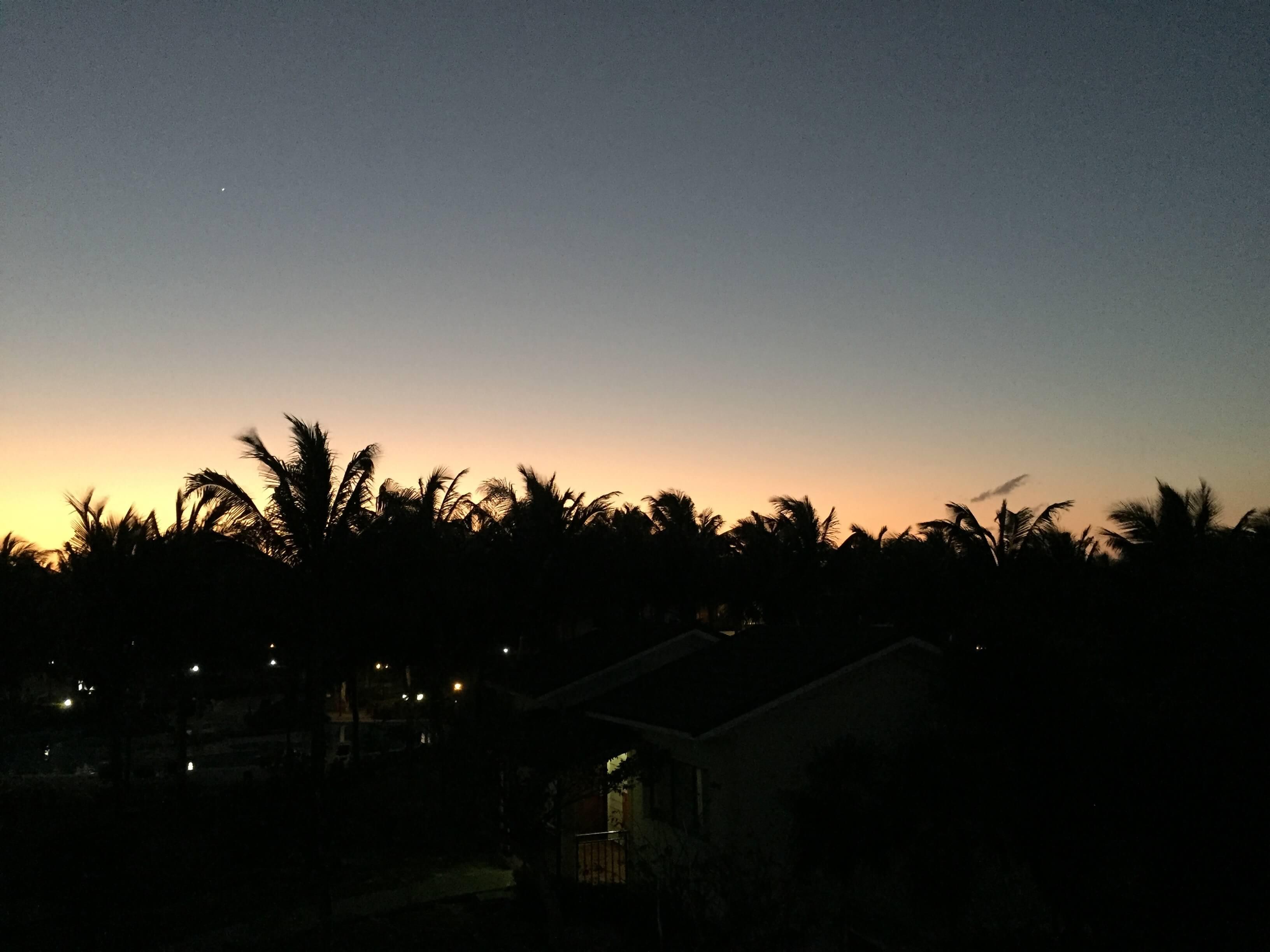Cayo Santa Maria Nacht Palmen