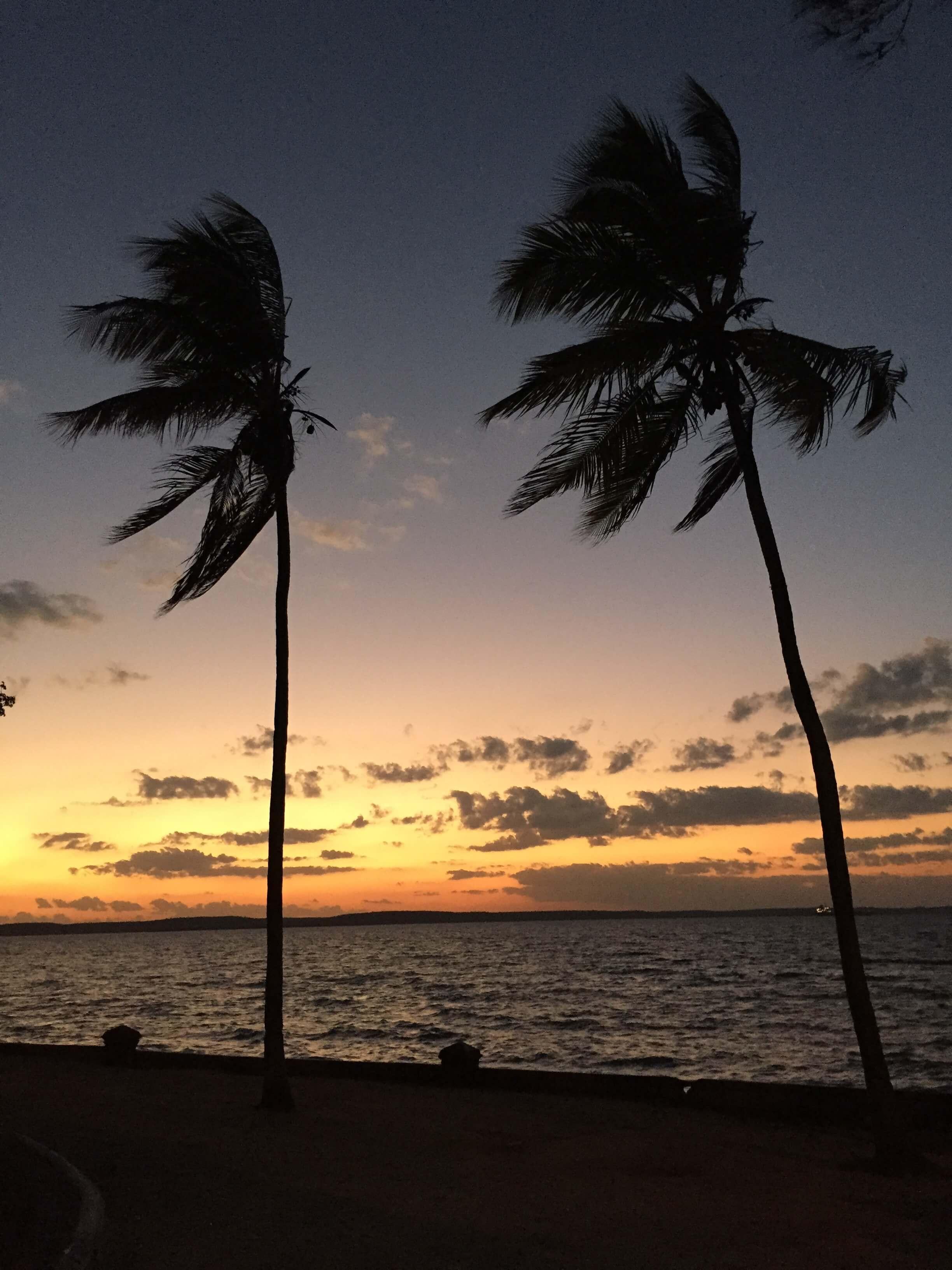 Cienfuegos Palmen Sonnenuntergang